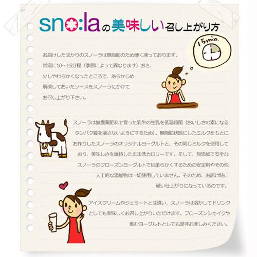 snola-M6-01